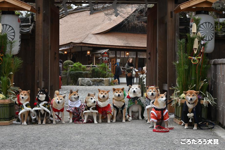 吉水神社にて